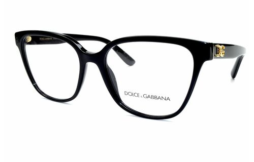 Dolce & Gabbana (D&G) 3321 501